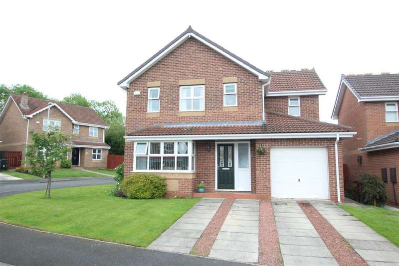 4 Bedrooms Detached House for sale in Hamilton Drive, Darlington