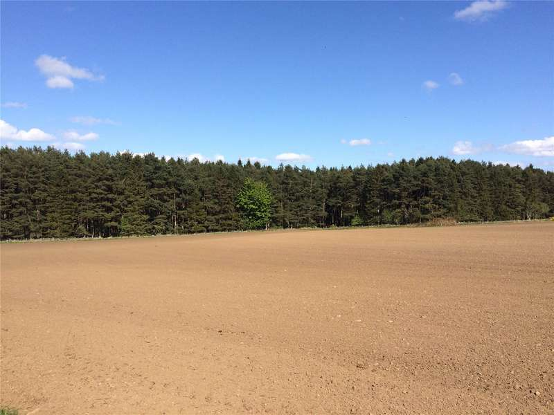 Land Commercial for sale in Corskie Woodland, Dunecht, Aberdeenshire, AB51