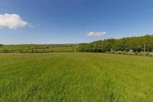Land Commercial for sale in Crorieshill - Lot 4, Cassillis, Maybole, South Ayrshire, KA19