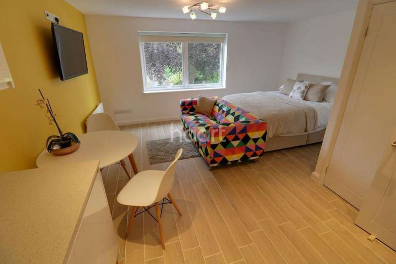 Studio Flat for sale in Alison Court, Apsley Road, Clifton