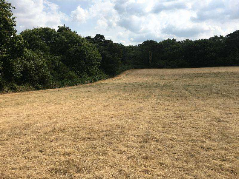 Land Commercial for sale in LOT 3 Hundleby, Spilsby