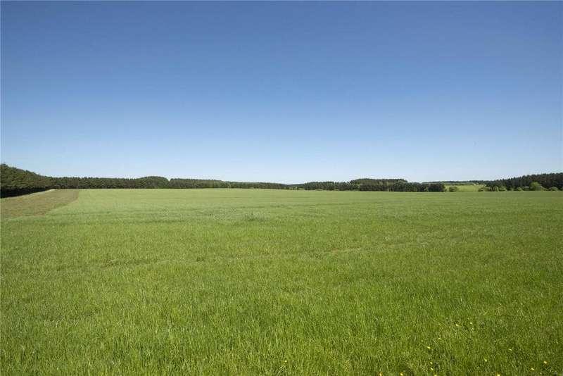 Farm Commercial for sale in Lot 1 - Ellon Farms Portfolio, Ellon, Aberdeenshire, AB41