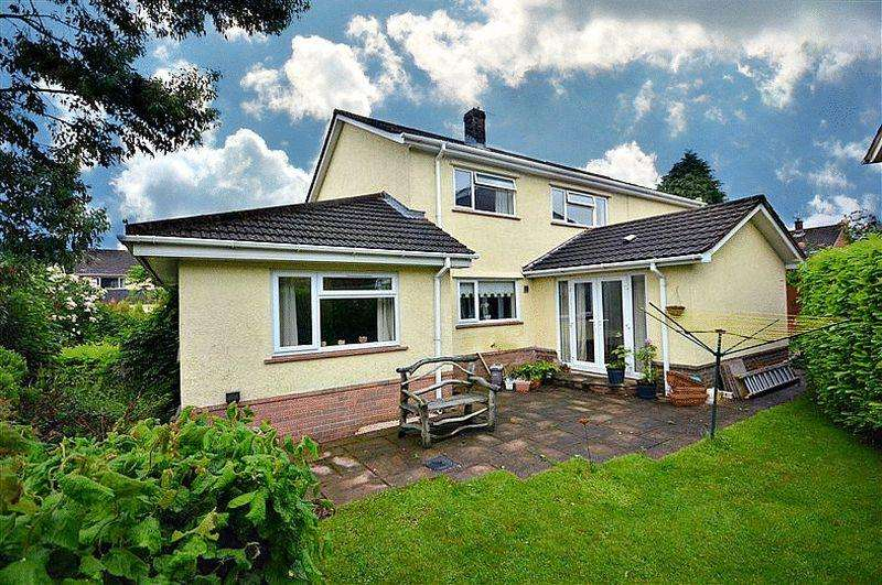 4 Bedrooms Detached House for sale in The Alders, Llanyravon