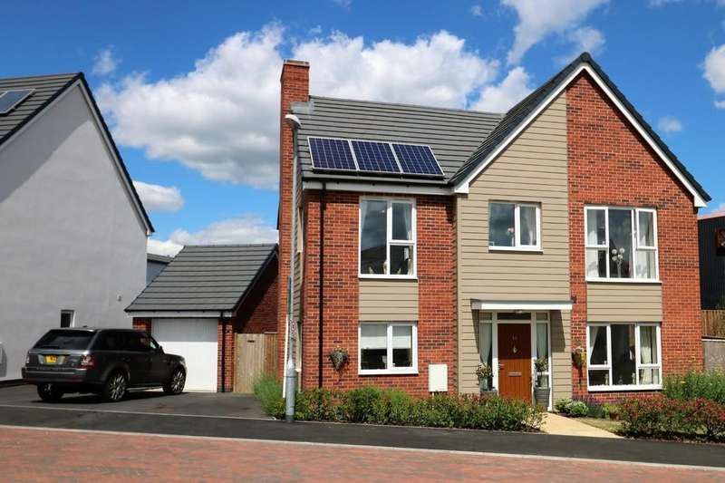 4 Bedrooms Detached House for sale in Buckthorn Road, Ravenstone