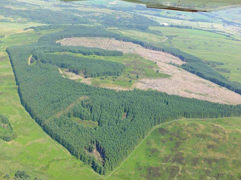 Land Commercial for sale in Kirkconnell Forest, Near Ringford, Dumfries and Galloway DG7