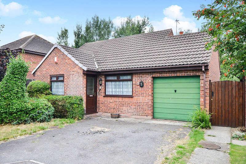 2 Bedrooms Detached Bungalow for sale in Recreation Close, Blackwell, Alfreton, DE55