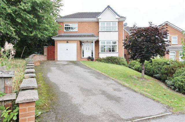 4 Bedrooms Detached House for sale in Cardwell Drive, Woodhouse, Sheffield, S13 7XD