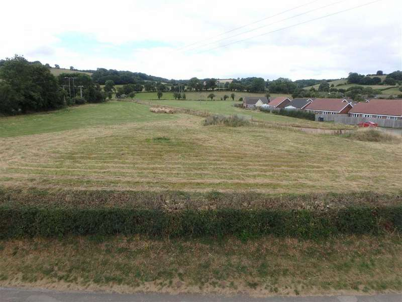 Land Commercial for sale in 3.93 Hectares (9.71 Acres), Peterchurch, Hereford