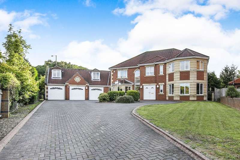 6 Bedrooms Detached House for sale in St. Pauls Drive, DH4