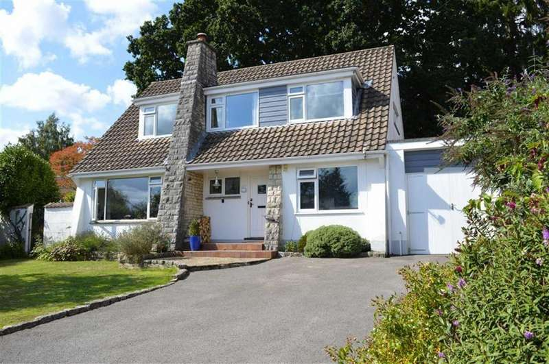4 Bedrooms Chalet House for sale in Middlehill Drive, Wimborne, Dorset