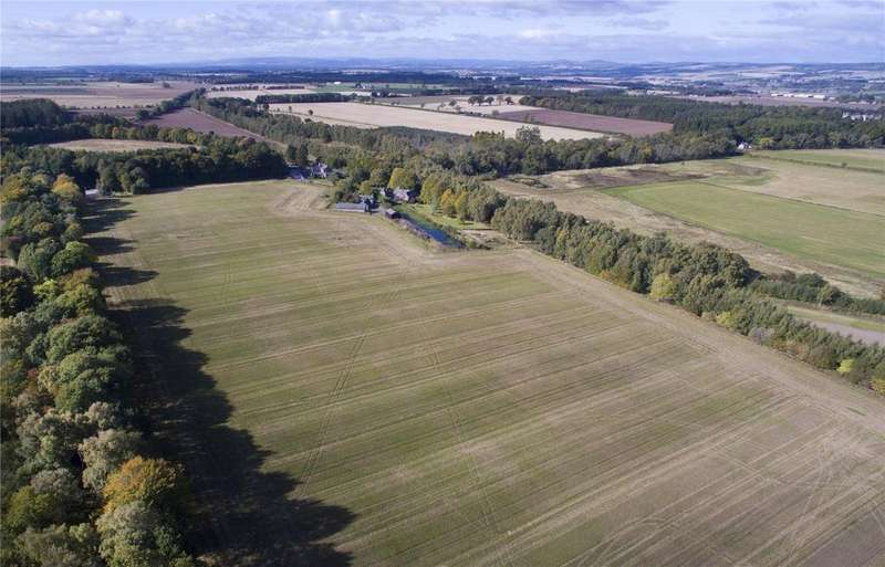 Farm Commercial for sale in Belmont Farmland: Lot 2, Newtyle, Blairgowrie, Perthshire