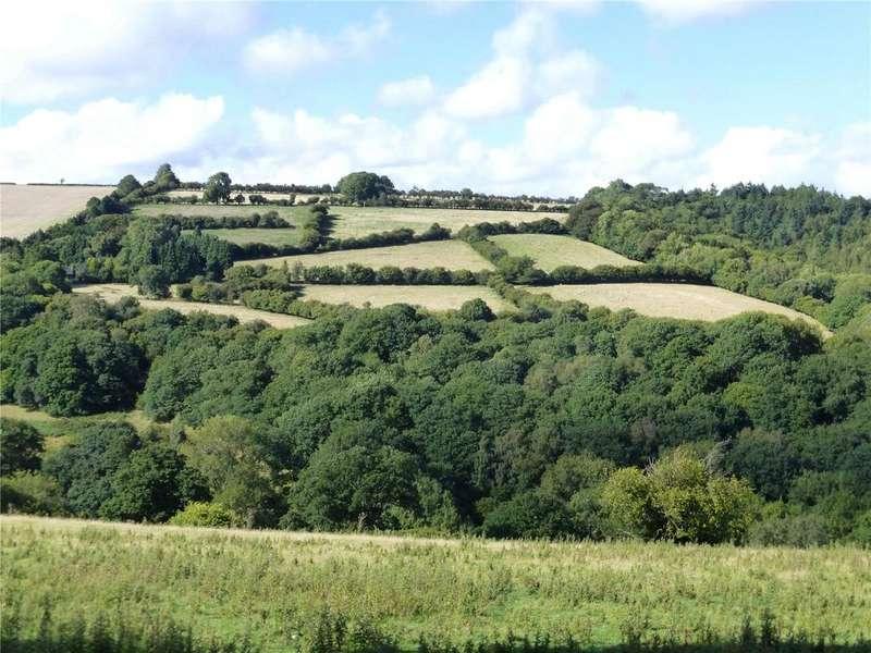 4 Bedrooms Farm Commercial for sale in Presteigne, Powys