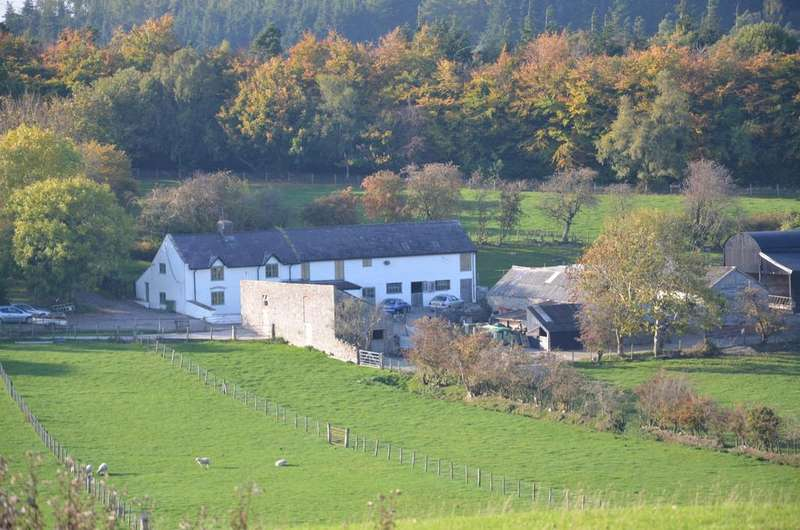 4 Bedrooms Farm House Character Property for sale in Bwlchgwyn LL11