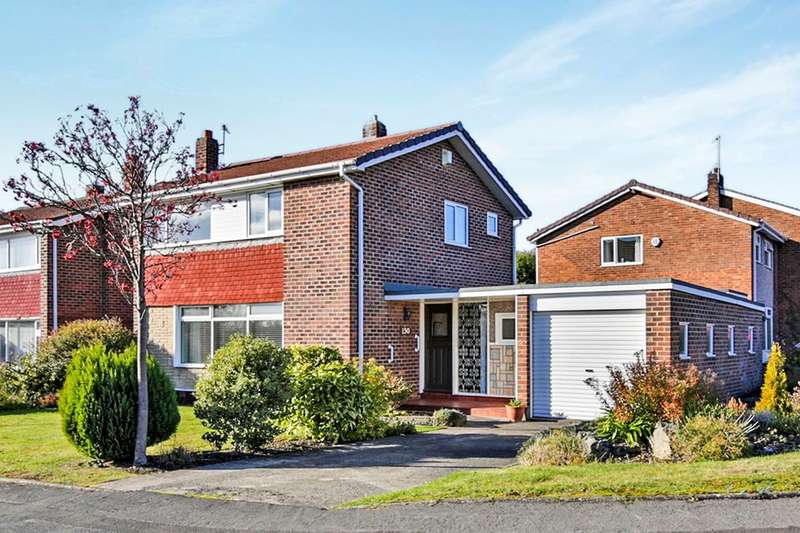 3 Bedrooms Detached House for sale in Hilda Park, Chester Le Street, DH2
