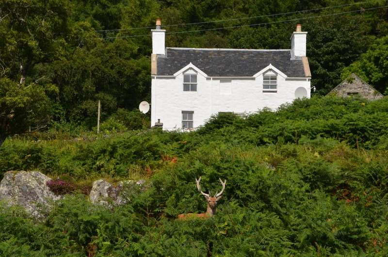 3 Bedrooms Detached House for sale in Lagg, Isle Of Jura