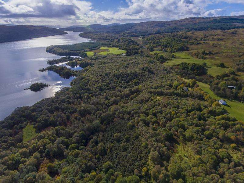 Land Commercial for sale in Kilchrenan Woodlands, Loch Awe, Argyll PA35