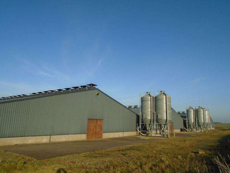 4 Bedrooms Farm Commercial for sale in Longside, Peterhead AB42