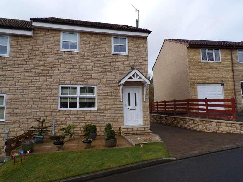 3 Bedrooms Property for sale in Meadow Grange, Haltwhistle, Northumberland, NE49 9PB