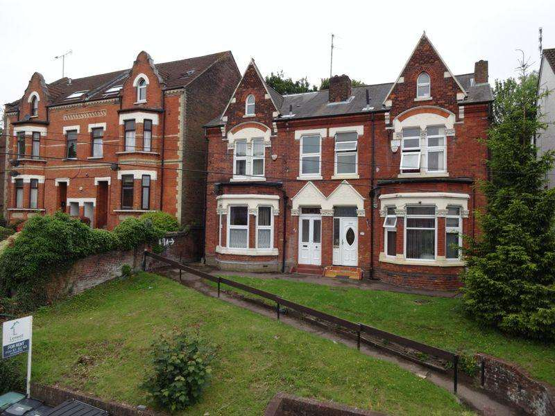 3 Bedrooms Semi Detached House for sale in Napier Road.