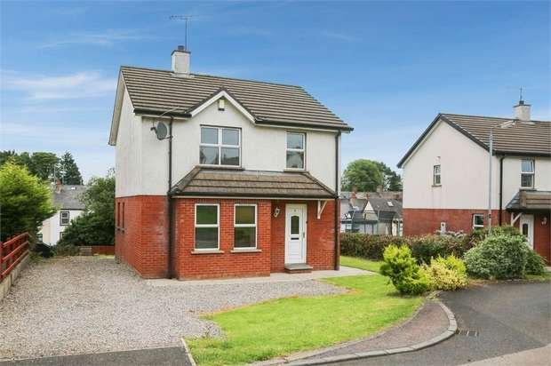 3 Bedrooms Detached House for sale in Dicksons Hill, Ballymena, County Antrim
