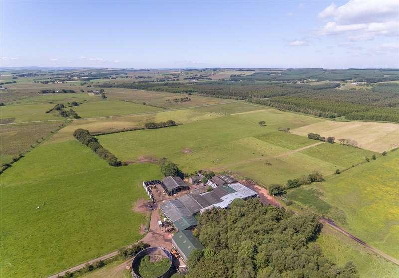 Farm Commercial for sale in Lot 1 Gowmacmorran Farm, Forth, Lanark, South Lanarkshire, ML11