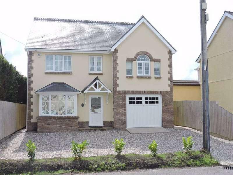 7 Bedrooms Detached House for sale in Pantyblodau Road, Blaenau, Ammanford