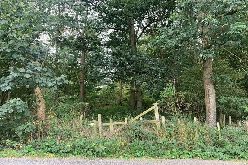 Land Commercial for sale in 1.3 acres of Woodland