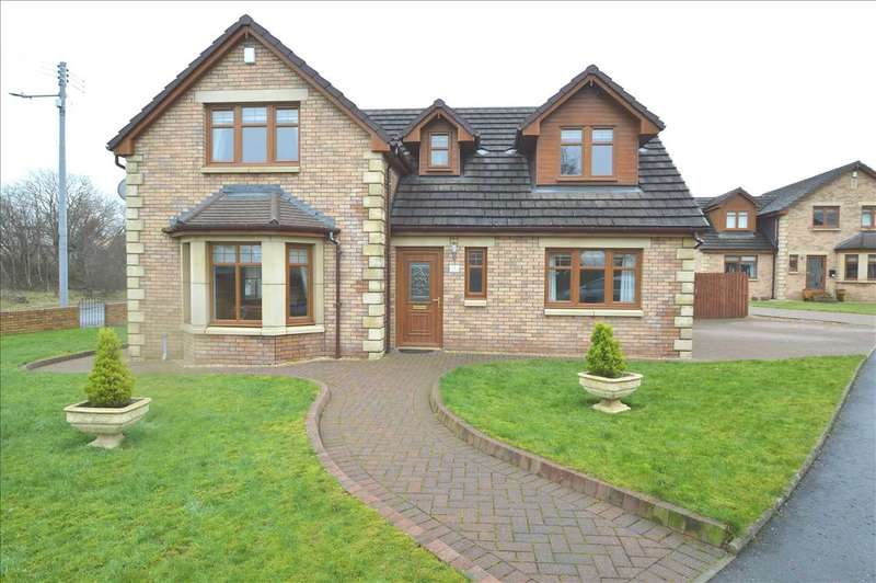 4 Bedrooms Detached House for sale in Carlisle Court, Larkhall