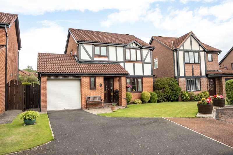 3 Bedrooms Detached House for sale in Meltham Court, North Walbottle, Newcastle Upon Tyne, NE15