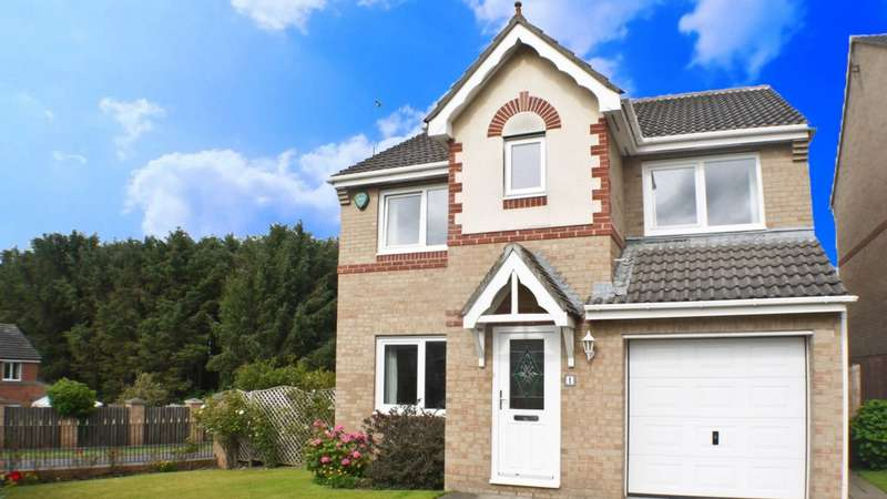 4 Bedrooms Detached House for sale in Grey Lady Walk, Prudhoe, NE42