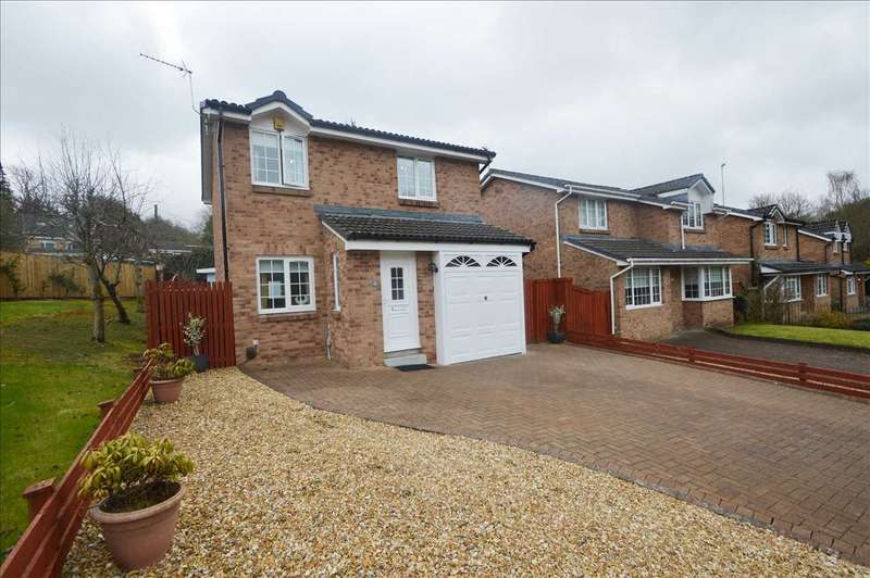 3 Bedrooms Detached House for sale in Clove Mill Wynd, Larkhall