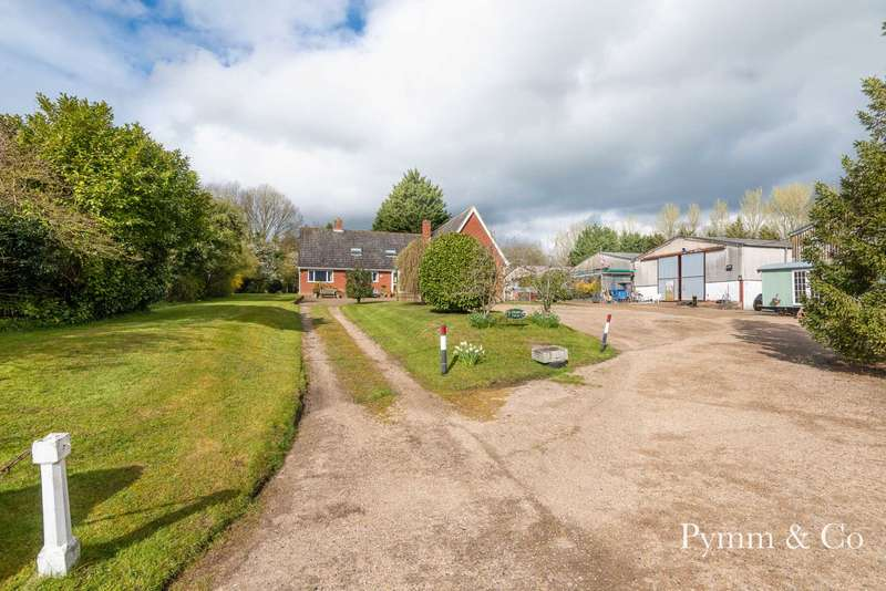 5 Bedrooms Detached House for sale in Model Farm , Wash Lane, Aslacton NR15