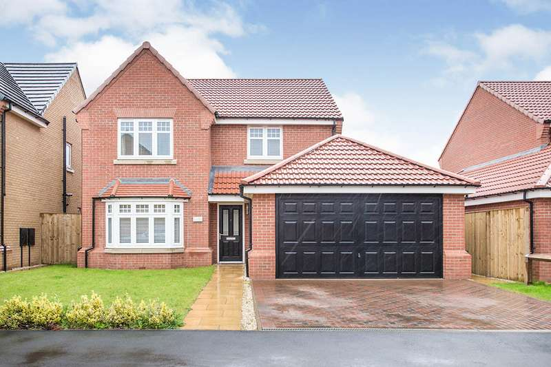 4 Bedrooms Detached House for sale in Airfield Way, Hucknall, Nottingham, NG15