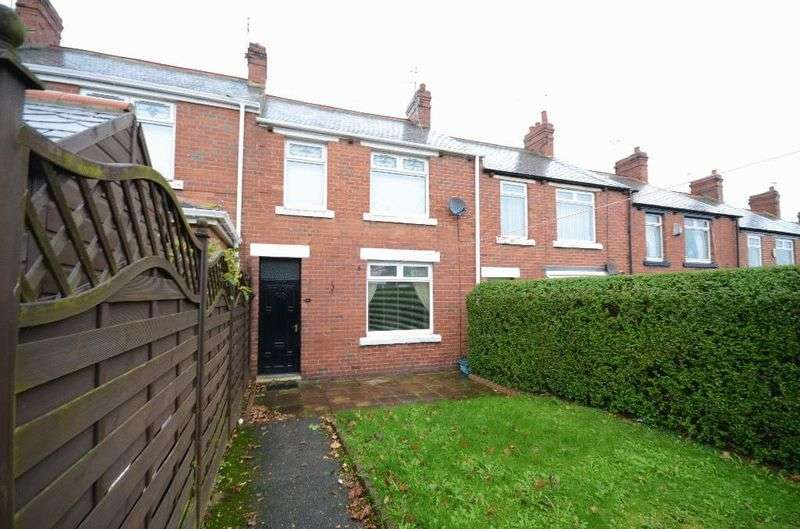 2 Bedrooms Terraced House for sale in Polemarch Street, Seaham
