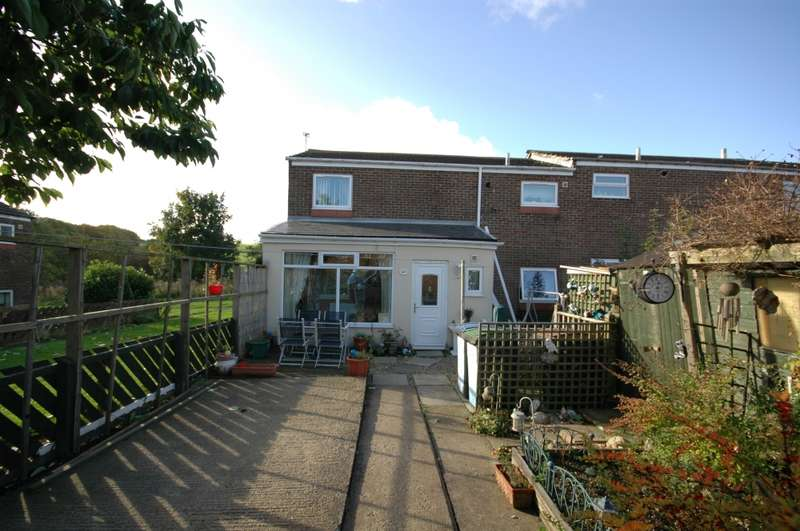 3 Bedrooms End Of Terrace House for sale in Briardene, Esh winning, County Durham, DH7