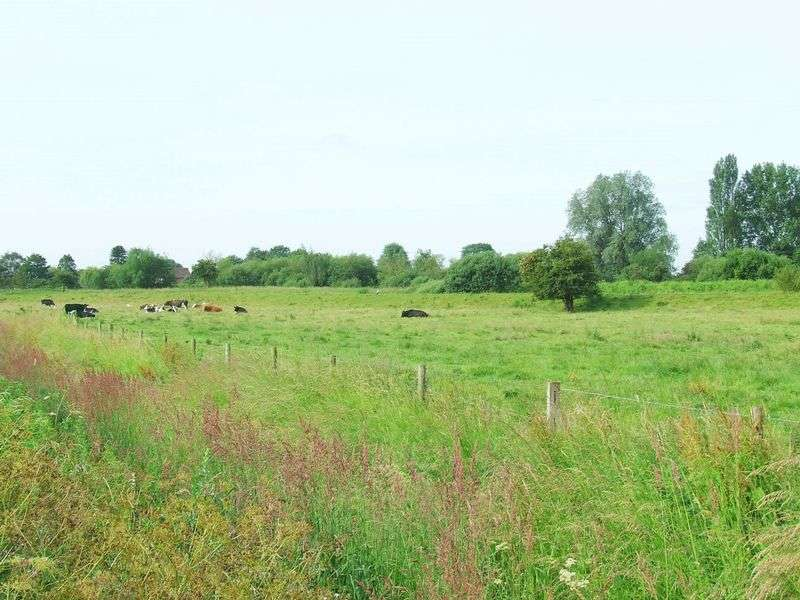 Property for sale in 43 Acres Pasture Land, Kirkby on Bain