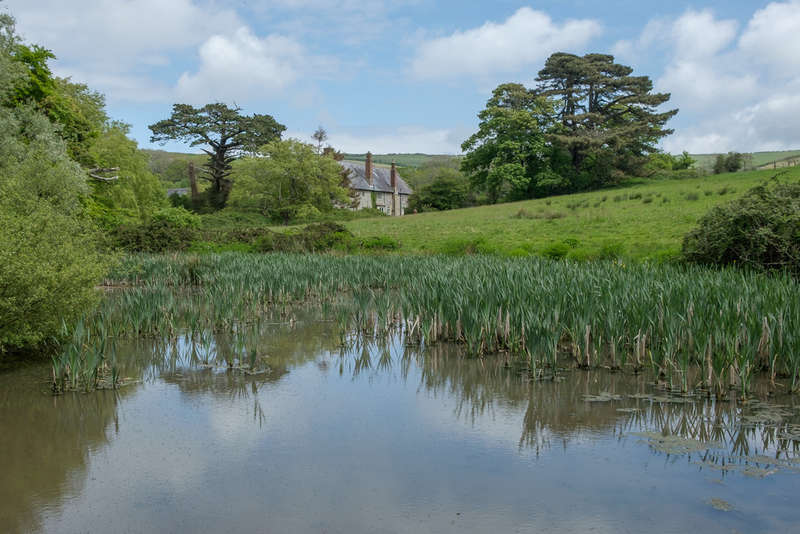 7 Bedrooms House for sale in Godshill, Isle Of Wight