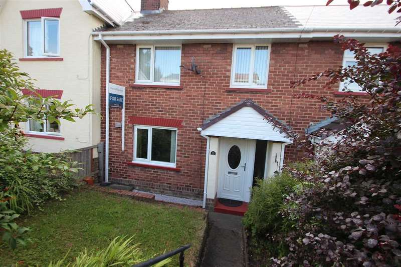 3 Bedrooms Terraced House for sale in York Road, Blackhill, Consett