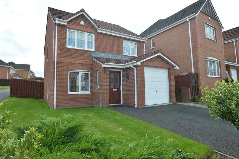 3 Bedrooms Detached House for sale in Skylands Place, Torhead Farm, Hamilton