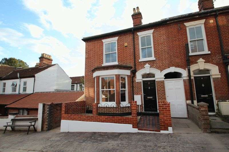 3 Bedrooms Terraced House for sale in Lincoln Street, Norwich