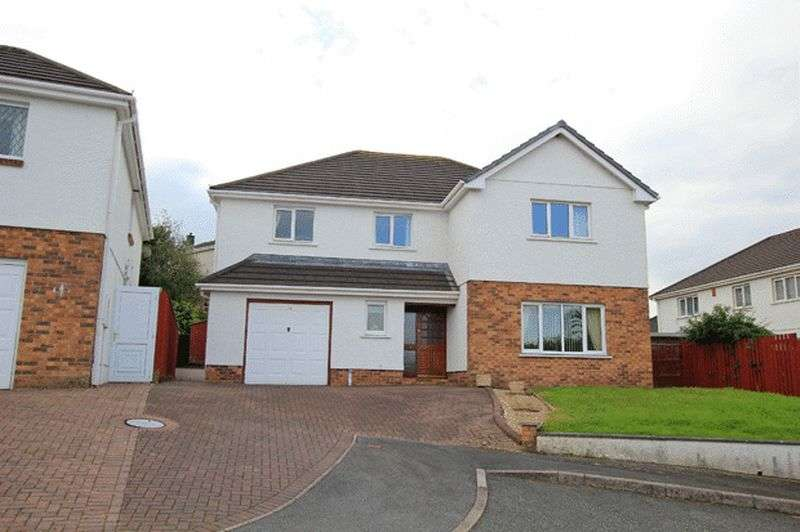 5 Bedrooms Detached House for sale in LLANGUNNOR, CARMARTHEN