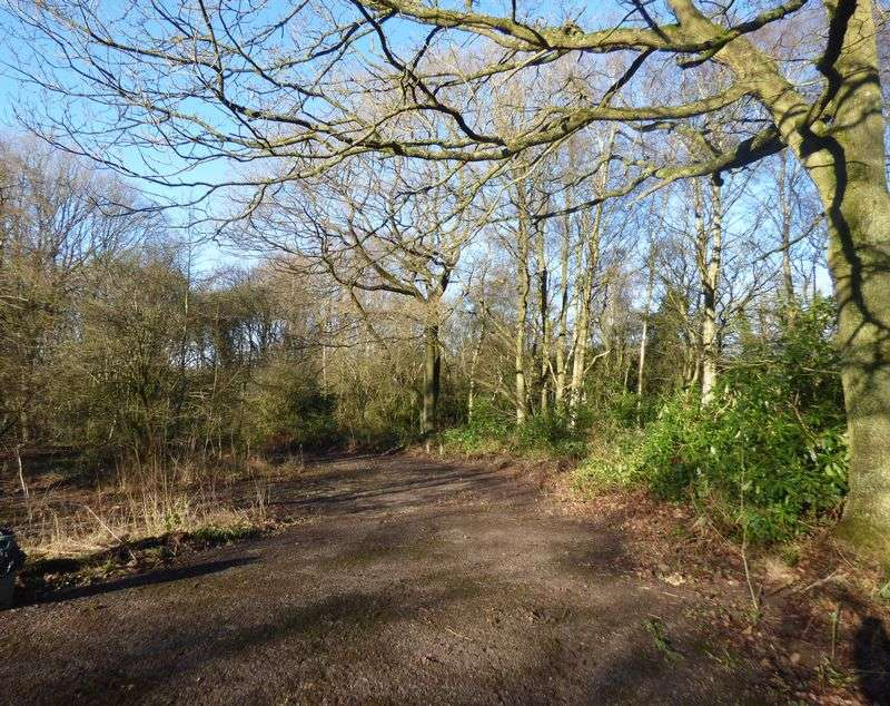 Property for sale in Woodland off Lea Moor Road, Lea, Matlock