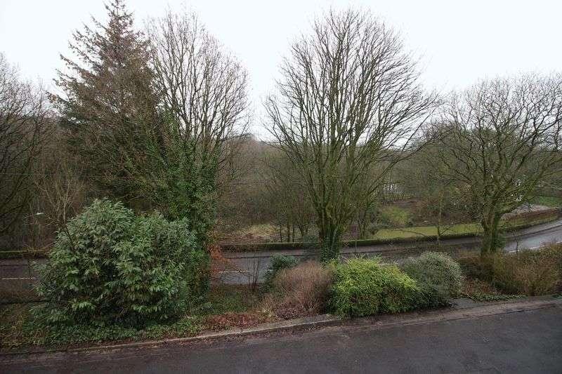 3 Bedrooms Semi Detached House for sale in Bryn Lea Terrace, Bolton, BL1