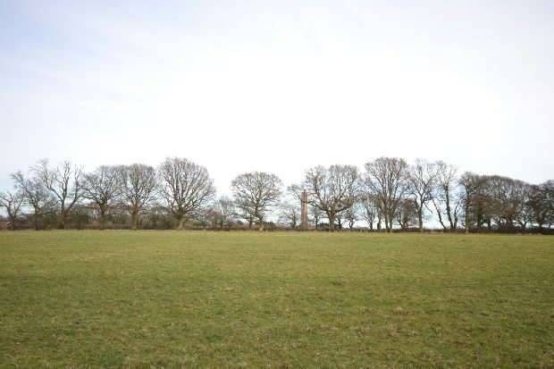 Land Commercial for sale in Sway