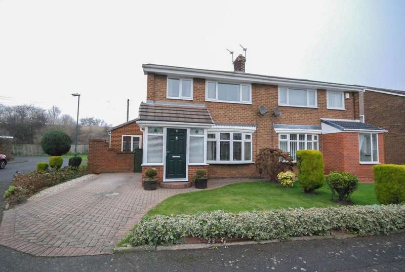 3 Bedrooms Semi Detached House for sale in Holland Park Drive, Jarrow
