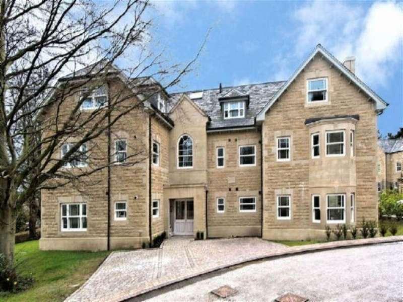 2 Bedrooms Apartment Flat for rent in Apt 2 Blue Ridge Close, Ashfurlong Road, Dore, S17