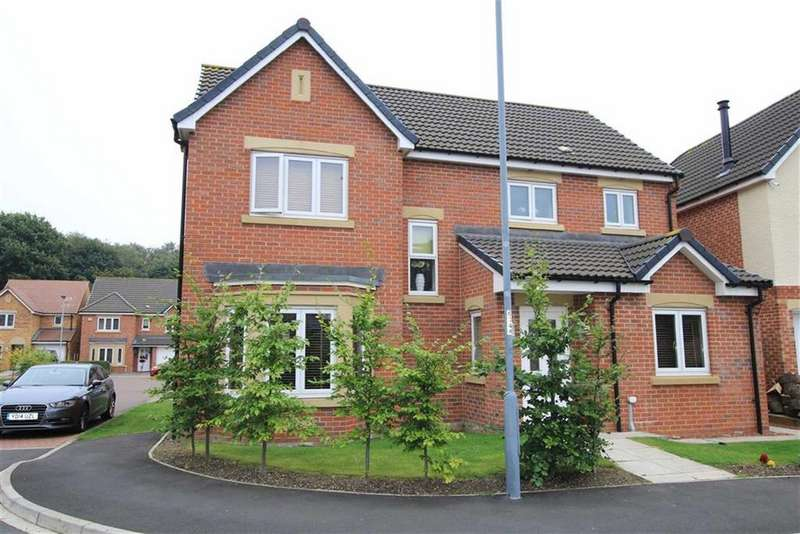4 Bedrooms Detached House for sale in Annand Way, Newton Aycliffe, County Durham