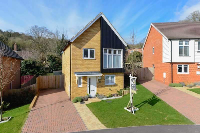 3 Bedrooms Detached House for sale in Elysium Park Close, Whitfield, Whitfield, CT16