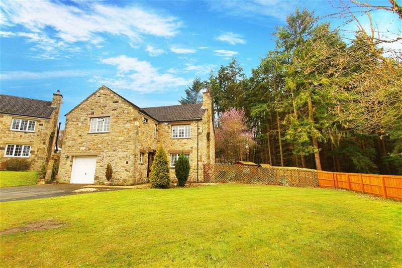 4 Bedrooms Property for sale in Fernwood Grove, Hamsterley Mill