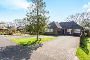 3 Bedrooms Bungalow for sale in Mill Vale Meadows, Milland, Milland, Hampshire